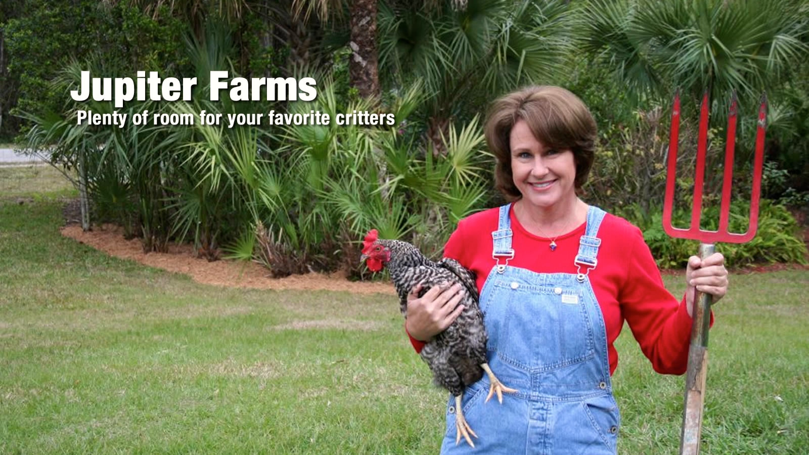 Raising Chickens in Jupiter Farms Neighborhood